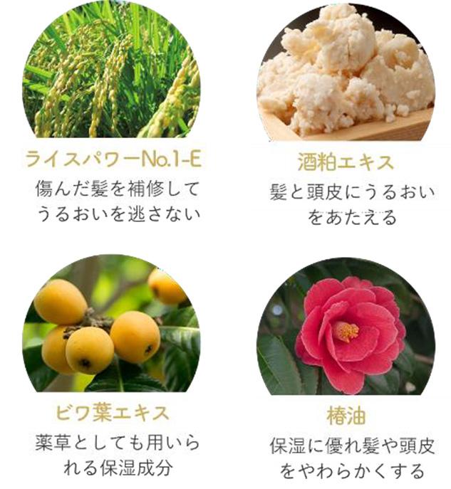 ライスパワー・酒粕エキス・ビワ葉エキス・椿油配合/効果解説の図