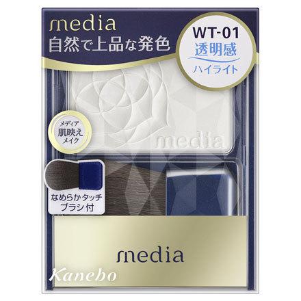 ブライトアップチークN / WT-01 / 3.0g