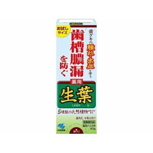 生葉(しょうよう)b / お試しサイズ / 40g