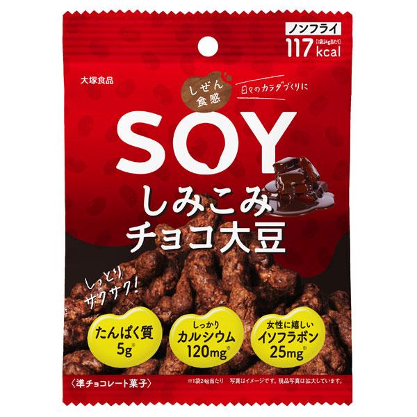 しぜん食感 SOY しみチョコ大豆 / 21g