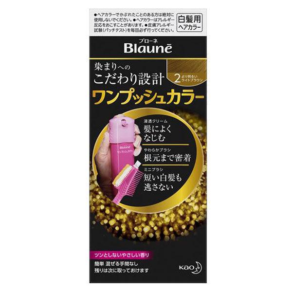 ワンプッシュカラー / 本体 / 【2】より明るいライトブラウン / 40g(1剤)+40g(2剤)